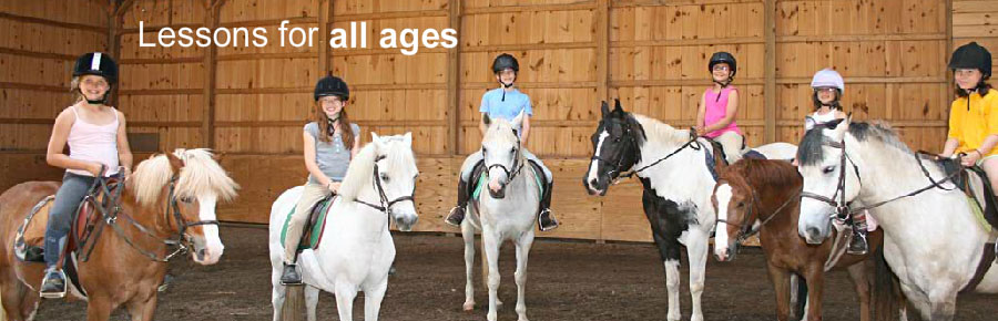 Painted Dreams Farm Riding Lessons and Birthday Parties