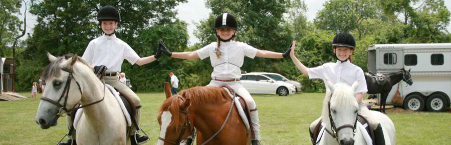 Painted Dreams Farm Horse Riding Lessons